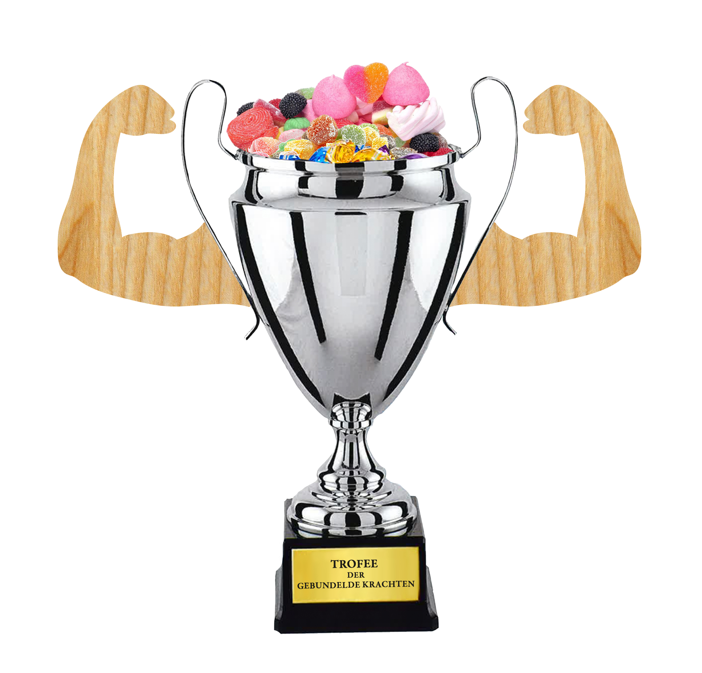 the trofee project A month or so after we celebrate the new year, we have an american celebration of athletic ability the super bowl crowns the best professional football team with the.